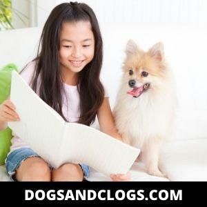 Pomeranian And Children