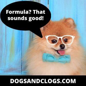 Pomeranian Routine Training Formula