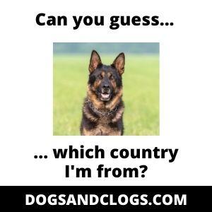 German Shepherd Country Meme