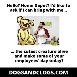 Bringing A Dog To Home Depot