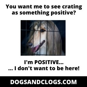 Make Crate Training A Positive Experience Meme