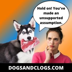 Don't Assume That Your Husky Is Always Hungry