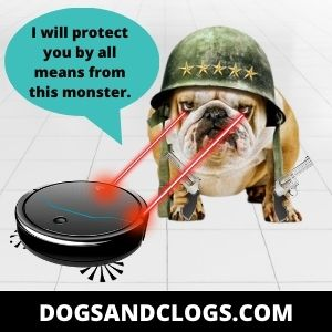 Your Dog Is In Defense Mode