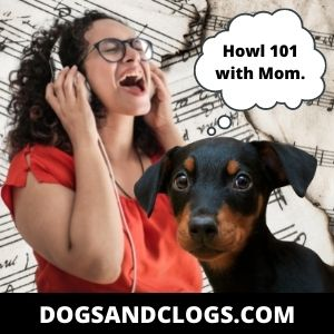 Your Dog Doesn't Know How To Howl