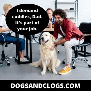 Your Dog Has Hyper Attachment