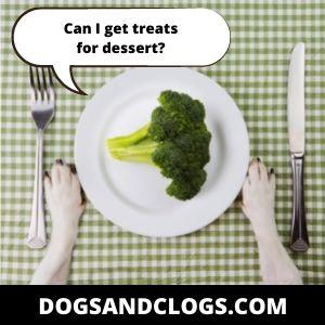 Modify Your Dog's Diet