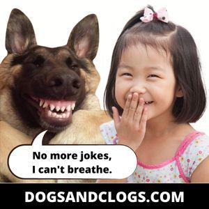 German Shepherd Joke