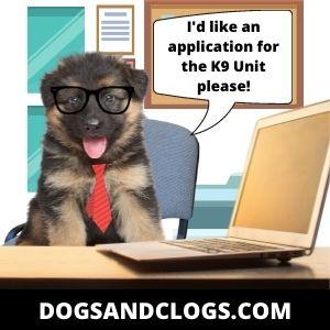 German Shepherd Puppy Memes