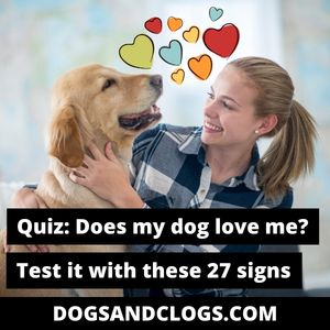 Does My Dog Love Me Signs